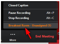 Image: Zoom - choosing Breakout Room - Unassigned