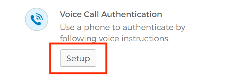 Voice Call Authentication