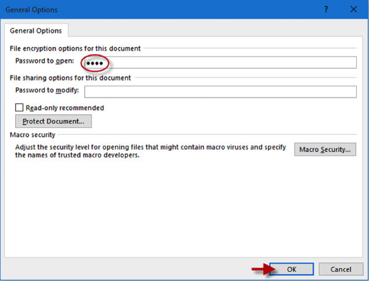 Image: Word General Options password